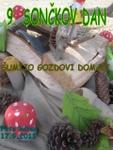 sonckov_dan_2011